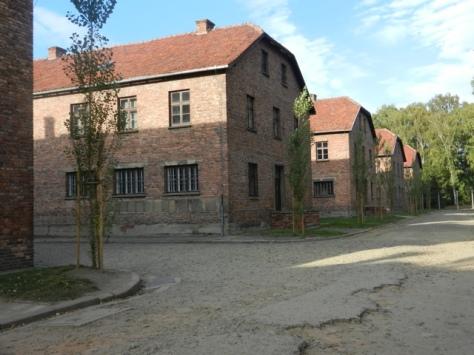 20111005-020115.jpg