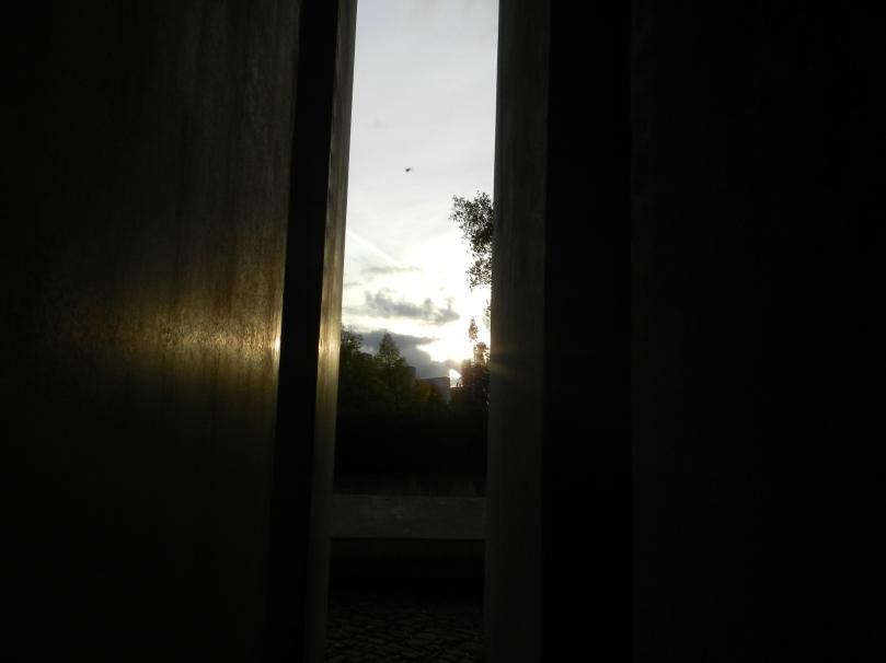 20111014-105624.jpg