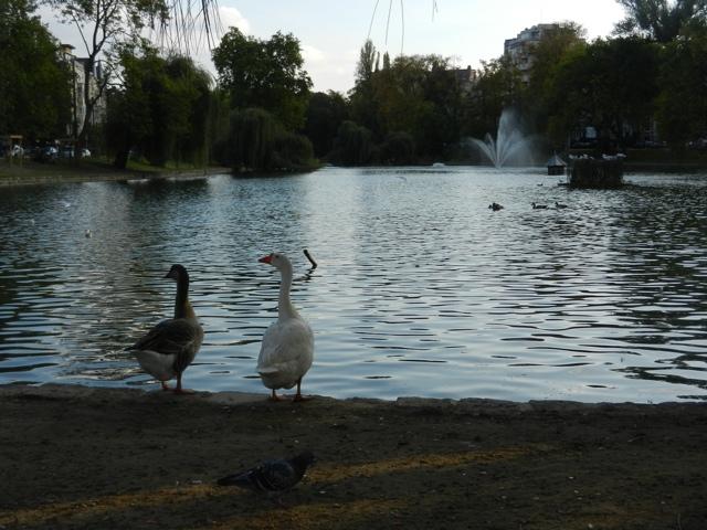 20111021-091336.jpg