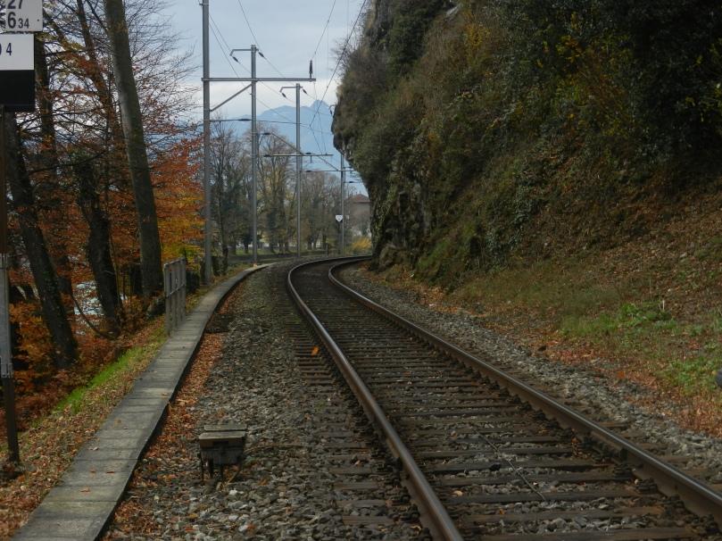 20111105-032734.jpg