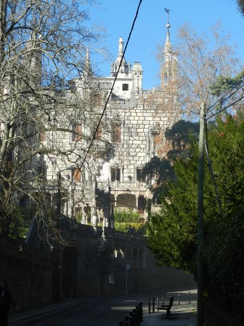 20111207-103003.jpg