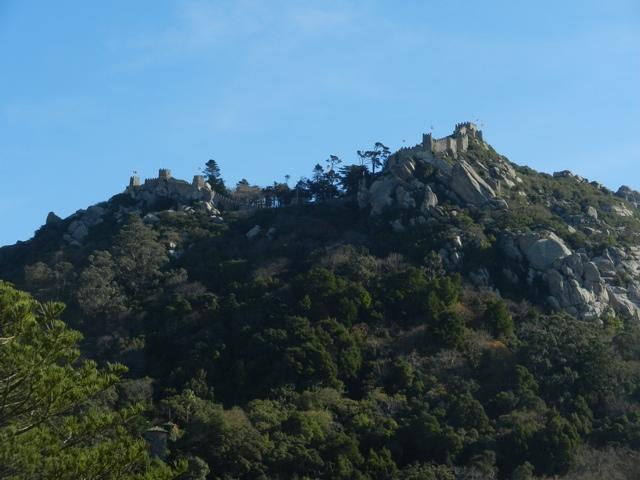 20111207-103518.jpg