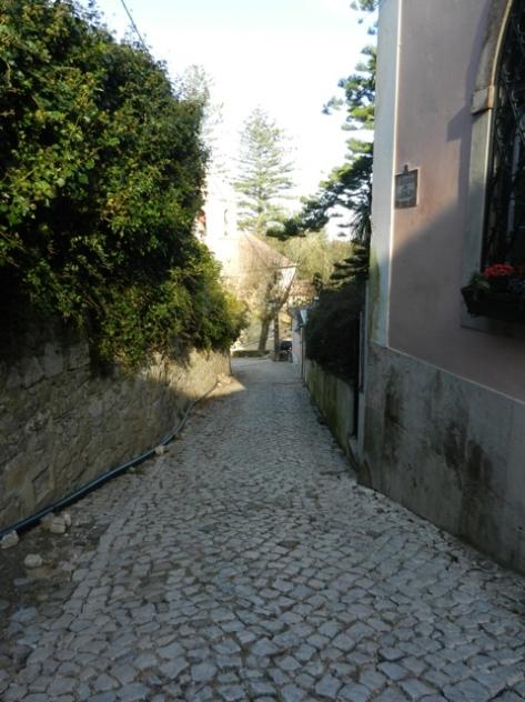 20111207-103806.jpg