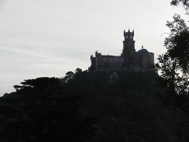 20111207-104540.jpg