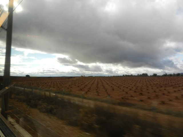 20111212-015347.jpg